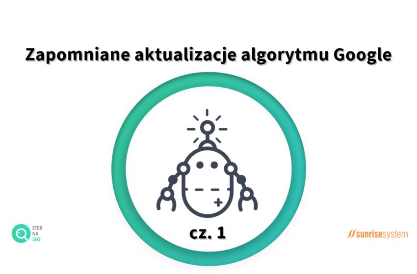 Zapomniane aktualizacje algorytmu Google cz.1